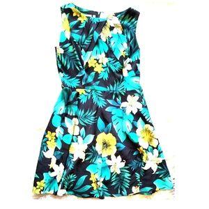 **NWT** Signature Darby Sunday Best Dress
